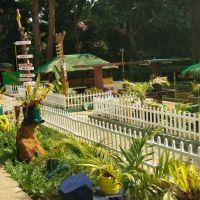 mangold-resort-gallery-106