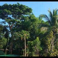 mangold-resort-gallery-110