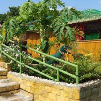 mangold-resort-gallery-116