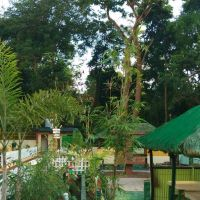 mangold-resort-gallery-39